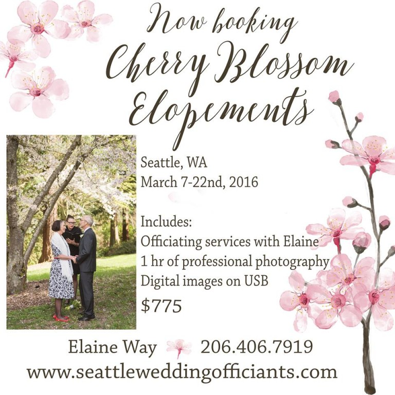 Cherry Blossom Elopements, Seattle Wedding Officiants, Seattle elopement, elope in seattle, Jeanne Phinney Photography, Last minute wedding, Elaine Way