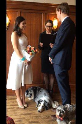 Can I have my dog at my wedding, Dogs in weddings, elopement with dog, Seattle Wedding Officiants